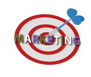 Organic vs Paid Marketing Strategies | Riviera Finance