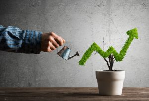 10 Tips to Grow Your Small Business